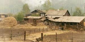Siberian farm in June